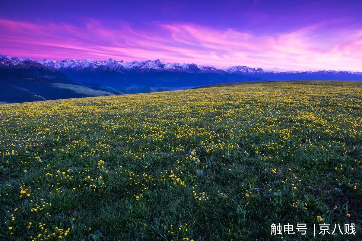 这里有辽阔的草原,巍峨的雪山,绚烂的花海,湛蓝的天空,犹如人间仙境.